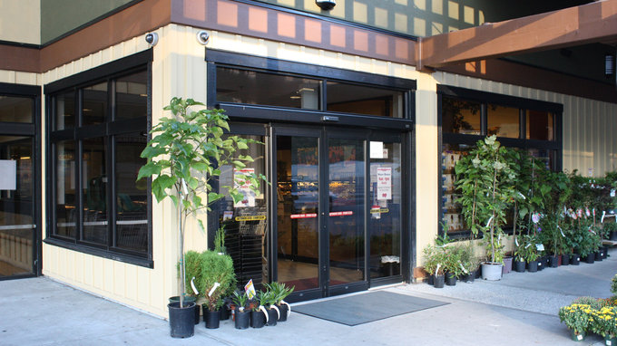 Commercial Storefront Aluminum Windows Vinyl Windows